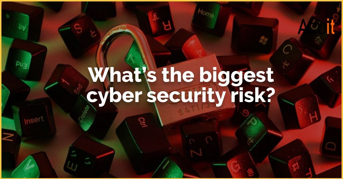 What's the biggest cyber security risk?